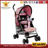 Girls Baby Stroller and Baby Carrier