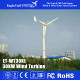 30kw Wind Turbine Generator Wind Power System Windmill for House