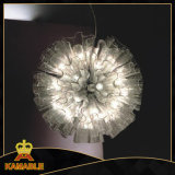 High Quality Modern Glass Fancy Home Light (730S3)
