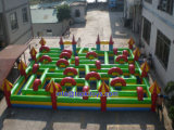 Giant and Big Inflatable Obstacle with Carton Printing (A511)