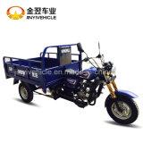 3 Wheel Motorcycle Max Loading 350kg