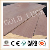 Two Times Hot Press 15mm Bintangor Commercial Plywood (BCP-003)