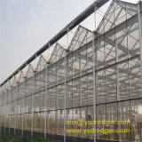 Wenlo Glass Greenhouse with Galvanized Steel Structure