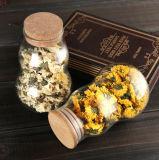 up Grade Pyres Glass Jar Carabash Shape Storage Jar for Kitchenware
