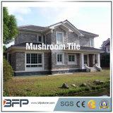 Yellow/Grey/Rusty Color Mushroom Slate Tile for Wall Tiles