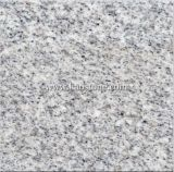 Sesame White Granite Tiles -G365