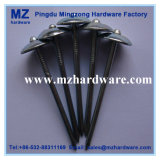 Electro Hot-Dipped Galvanized Umbrella Head Roofing Nail
