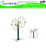 The Big Wheel Amusement Park Fitness Equipment (HD-17403)