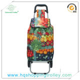 Vegetable Shopping Trolley Bag Hq-4006c