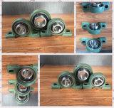 High Precision NSK NTN Pillow Block Bearing China Ball and Roller Bearing Factory Ucp208