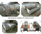 Pig Farm Application Galvanized Pipe Made Farrowing Crate Pig Flooring