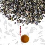 Milk Fragrant Oolong Milk Aroma, Milk Taste Oolong Tea