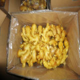 2016 Fresh Ginger in 10 Kg Carton with Good Quality