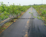 Weed Control Landscape Woven Fabric