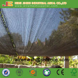 Building Safety Net/ Vegetable Use Shade Net