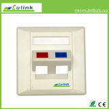 Hot Selling 86 Type 45 Degree Dual Port Faceplate