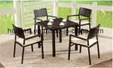 Outdoor /Rattan / Garden / Patio Furniture Polywood Furniture Chair& Table Set (HS 3001C&HS7108DT)