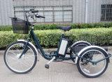 Alloy Wheel Electric Bicycle 3 Wheel Motorized Bike Three Wheel Cargo Tricycle
