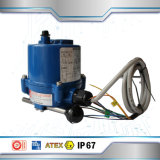 Explosion -Proof Electric Actuator for Valve