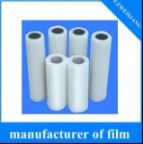 PE Protection Film for Sandwich Panel