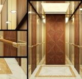 Passenger Elevator (GRPS20)