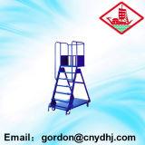 Steel Ladder Truck for Sale Yd-067