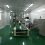 Dustfree Automatic Spray Paint/Painting Booth for Helmet