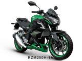Rzm250h-1A Racing Motorcycle 150cc/200cc/250cc