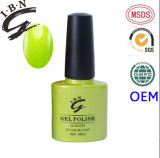 Ibn Wholesale Make -up Nail Without Orderv UV Gel Nail Polish OEM