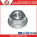 DIN6923 Stainless Steel Flange Hex Nut