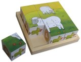 Educational Wooden Cube Puzzle Wooden Toys in a Tray
