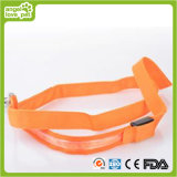 Dog Transparent Leash Pet Supply