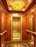 Fujizy Vvvf High Quality Villa Elevator with Ce Approved