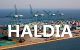 Qingdao to Haldia Shipping Sea Freight