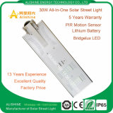 5W-120W Solar LED Garden Street Light with Ce RoHS Certification Outdoor Lighting
