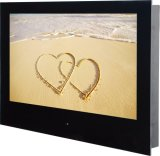 24-Inch LED Waterproof TV/Water Resistant TV with Mosaic Installed