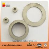 Ring Permanent Samarium Cobalt SmCo2: 17 Magnet