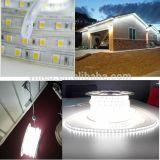 ETL 120V LED Ribbon 230V 5050 LED Strip Lighting 60LED/M