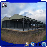 Steel Structure Cattle Farm Shed for Sale