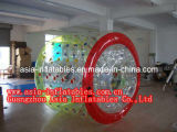 High Quality Water Roller, Colorful Water Roller Ball, Rolling Water Ball for Sale