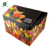 Full Flower Printing Cardboard Box (FP3012)