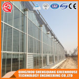 China Commercial Multi-Span Glass Greenhouse for Flowers