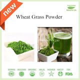 Natural Water-Soluble Wheat Grass Juice Powder