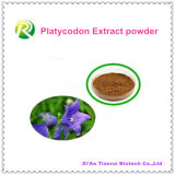 High Quality 100% Natural Platycodon Extract Powder