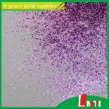Supplier Pearl Color Glitter Powder for Plastic