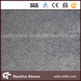 Cheap Grey Granite Tile with Good Quality