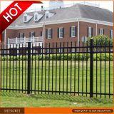Black Galvanized Decorative Steel Pipe Fence