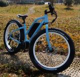 Powerful 48V 350W Cool Fat Tyre Electric Bike