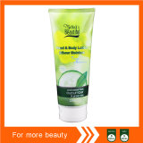 Cucumber Hand & Body Lotion