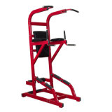 Assisted Chin up Upper Limbs Fitness Equipment Gym